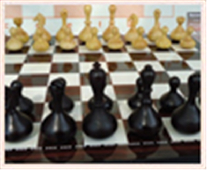 WOBBLE CHESS (SALLANAN SATRANÇ TAŞI)